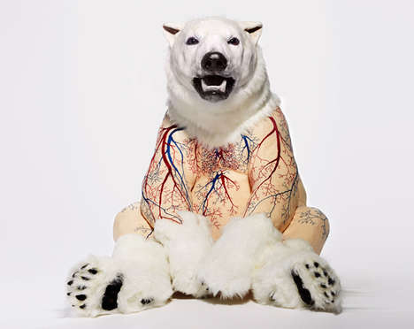 Inside-Out Taxidermy - Artist Deborah Simon Creates Revealing Faux Taxidermy Bears