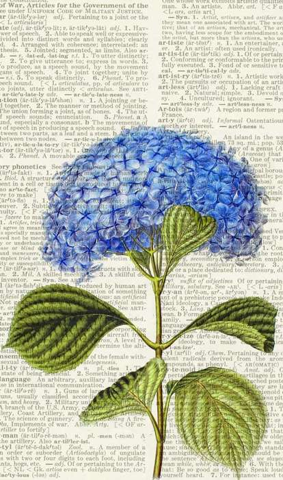 Vintage Dictionary Prints - These Whimsical Prints for the Wordsmith are Gorgeous
