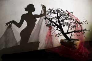 Teodosio Sectio Aurea Creates Iron Artworks That Cast Beautiful Shadows