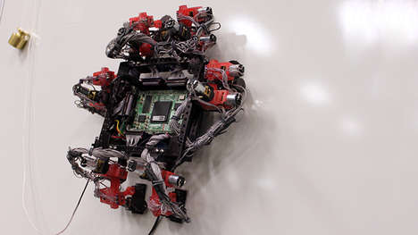 Gecko-Like Robots - Abigaille the Robot Has Sticky Pads on Its Feet Like a Reptile