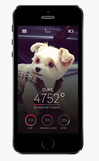 Gamified Pet Wellness Apps - The Petbit Pet Tracker Helps Owners Set Goals to Keep Pets Healthy