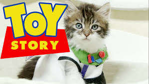 Cute Kitten Disney Parodies - This Toy Story Parody Features Two Kittens Playing the Main Characters
