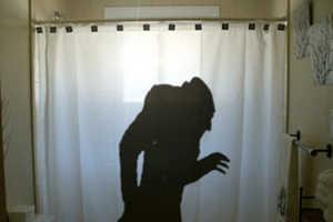 The Nosferatu Shower Curtain Celebrate Cinema's Greatest Monster