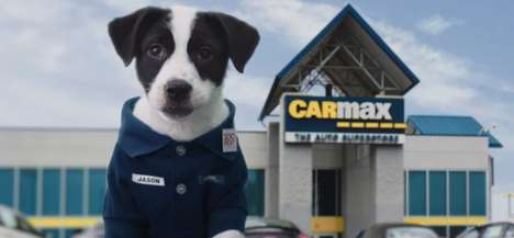 Canine Car Shop Ads - The 'Slow Bark' CarMax Ad is Made for the Puppy Bowl