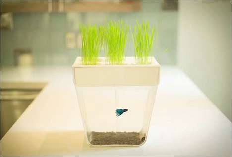 Mini Ecosystem Fishtanks - The AquaFarm Combines Aquaponics to Create a Mini Ecosystem