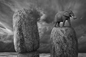 Darius Klimczak Creates Beautiful Photos in Black & White