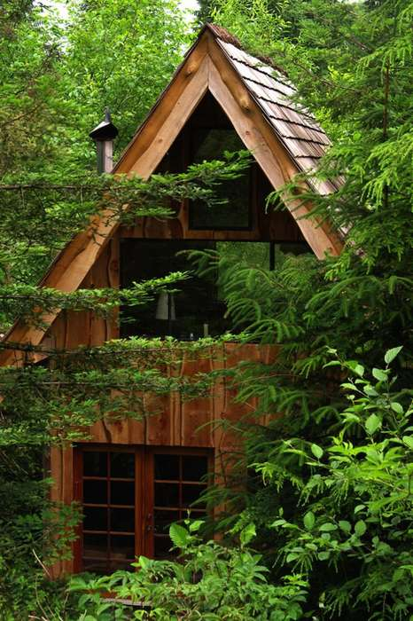 Locally Transformed Forest Homes - This Kayak Instructor Built a Home Using Materials Found Locally