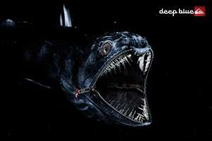 Extraordinary Quiksilver Deep Blue Ads