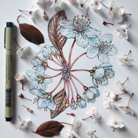 Meticulous Floral Illustrations - Scientific Artist Noel Badges Pugh has a Knack for Drawing Nature