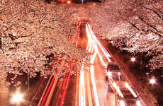 Romantic Pinkish Roadscapes - Photographer Arixxx is Behind These Cherry Blossom Landscape Shots