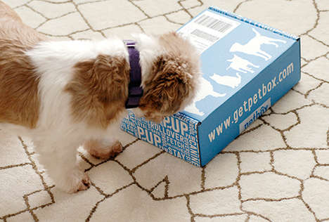 Hassle-Free Pet Goodies - The Pet Subscription Box from PetBox is Effective and Smart