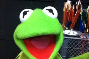 These Muppet Selfies are HIlarious and Nostalgic