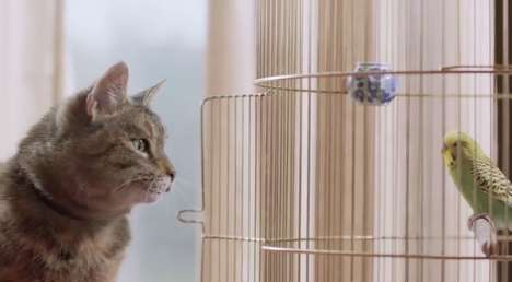 Feline Friend-Finding Television Ads - This Freeview TV Ad will Warm Your Heart