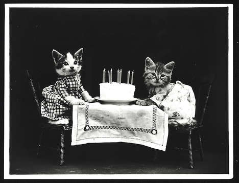 Adorable Vintage Cat Photos - The Little Folks of Animal Land Pictures Feature Cats from 1915