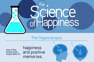 The Happiness Infographic Systematically Defines Joy
