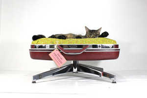 The Suitcase Cat Bed from Atomic Attic Puts Your Cat on a Pedestal