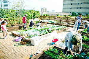 The Saradofarm Scheme Lets Train Commuters Garden On-the-Go