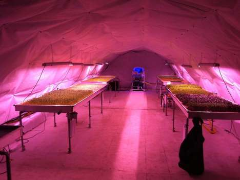 Reworked Bomb Shelter Farms - These Bomb Shelters Have Been Made into Underground Farms