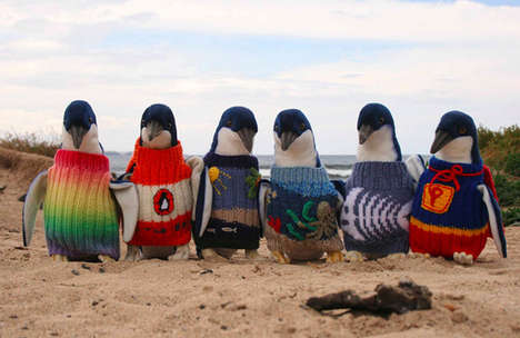Life-Saving Bird Jumpers - The Penguin Foundation Protects Birds with Adorable Penguin Sweaters