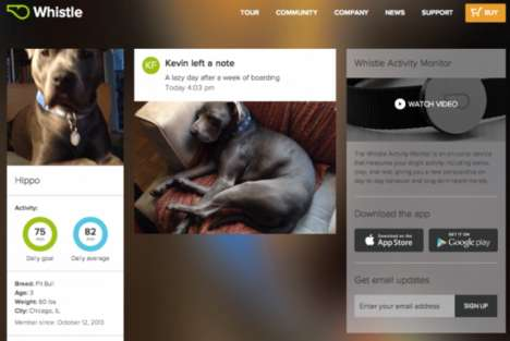 Pet Newsfeed Apps - The Whistle App Neatly Presents Data from the Whistle Dog Monitor
