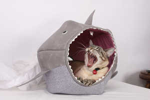Feed Your Kitty to the Fishes With the Shark Cat Bed