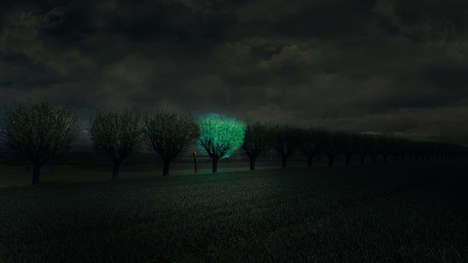 Bioluminescent Street Lights - Daan Roosegaarde Believes Glowing Trees Could Replace Street Lights