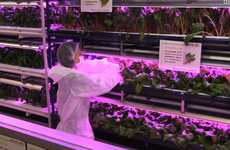 Illuminated Indoor Gardens - Keystone Technologies' LED Garden Saves Space and Energy