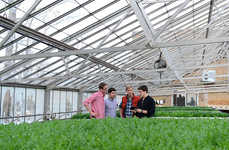 Indoor Personal Farm Apps - Grove Labs Will Help Commercial Farmers Do Their Work Inside