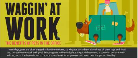 Office Pet Infographics - This Workplace Infographic Proves the Rewards of In-Office Pets