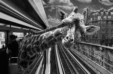 Animétro is a Series of Safari Animal Photos Taken on the Metro