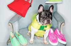Stylish Puppy Model Lookbooks