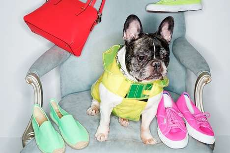 Stylish Puppy Model Lookbooks - The Shopbop Spring Collection Lets Dogs Have the Spotlight