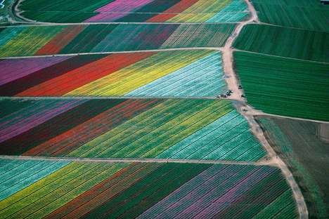 Astonishing Aerial Photography - Photographer Alex MacLean Took These Lovely Photos from the Air