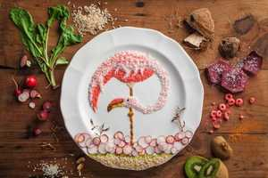 Anna Keville Joyce's Food Stylings Illustrate Different Bird Species