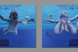 'Harvezt' Illustrates the Back Side of Famous Album Covers