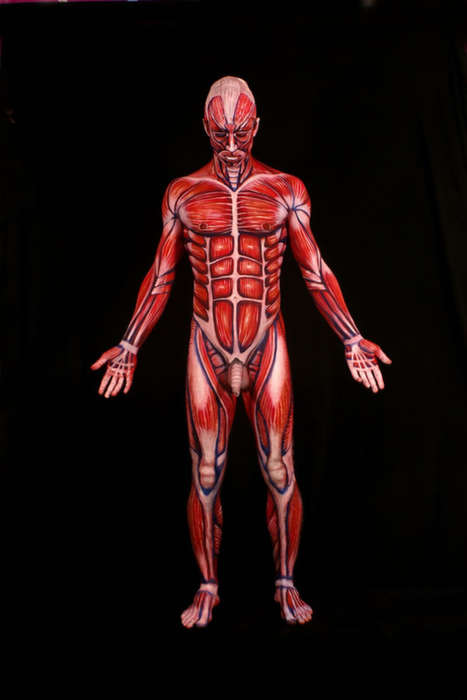 Anatomically Correct Body Art - Body Painter Johannes Stoetter is Incredibly Realistic