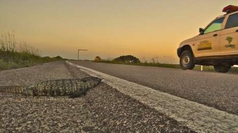 Crowdsourced Roadkill-Prevention Apps - The Uburu App Aims to Reduce Instances of Roadkill in Brazil