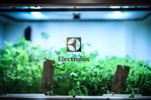 The Electrolux Home Garden Gives Users Access to Yearly Herbs