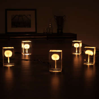 Illuminated Dandelion Lamps - Takao Inoue's OLED Tampopo Lights Have a Magical Glow
