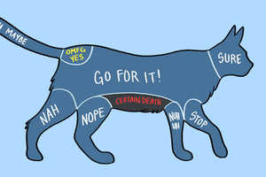 Adam Ellis Explains How to Pet Animals in These Charts