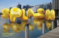 Typographic Balloon Branding