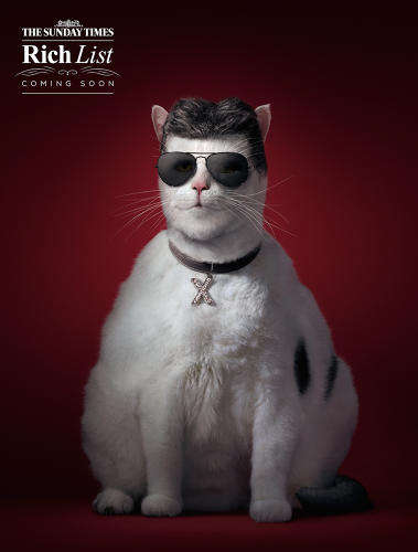 Promotional Pussycat Depictions - These Fat Cat Posters are for the Sunday Times Rich List 2014