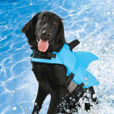 Aquatic Animal Life Vests - This Shark Finned Dog Life Jacket Lets Your Pet Swim in Sharp Style
