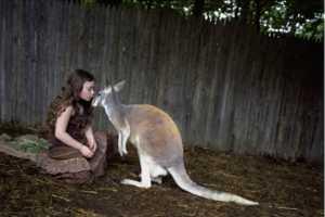 The Robin Schwartz Amelia Forman Images Focus on Animals