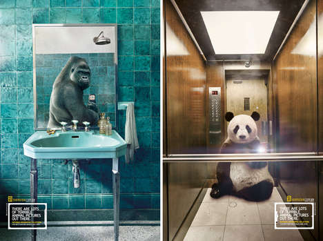 Animal Selfie Campaigns - Silvio Medeiros Puts Wildlife in Selfie Poses for National Geographic