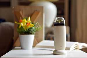 The EVE Ionizer is a Portable Purifier for Any Location