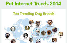 Intriguing Pet Infographics - This Infographic by Klooff Reveals Interesting Factoids About Pets