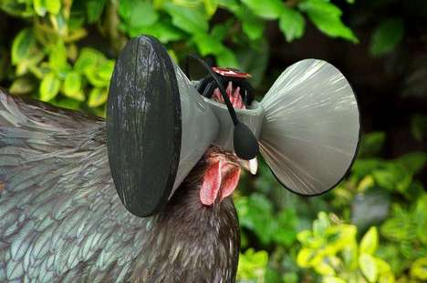 Fowl Virtual Reality Headsets - This Virtual Headset Tricks a Chicken into Thinking It Can Roam Free