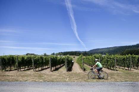 Cyclist Wine Tours - Pedal Bike Tours Takes Wine Lovers Through Hilly Oregon Wine Country