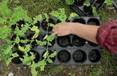 Job-Training Urban Farms - Cultivate London is a Social Enterprise Growing with Community